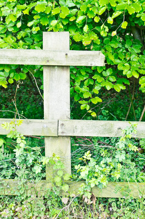 snapped: Part of a fence which is broken