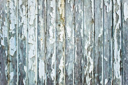 distressed: Weathered wood panel with peeling white paint Stock Photo