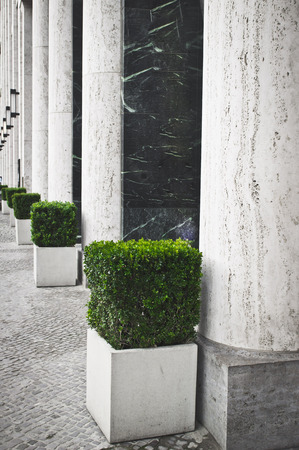 sculpted: Large stone pillars and sculpted plants outside an urban building