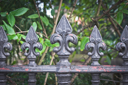 gothic style: Gothic style metal fence railings