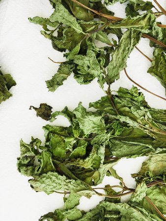 Dried mint leaves on a white background