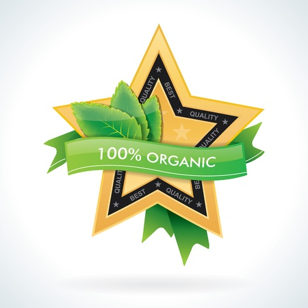 100  organic star emblem with green leaves Vector