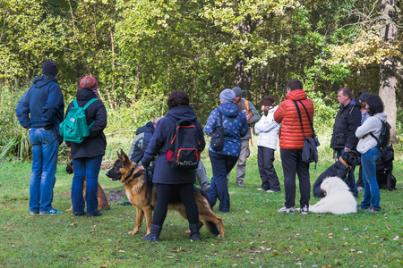 Moscow, Russia - October 08, 2017: A group of people with thoroughbred dogs gathered for training in Sokolniki Park of Culture and Leisure in Moscow