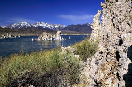 sierras: Tufa formations in the water at Mono Lake California