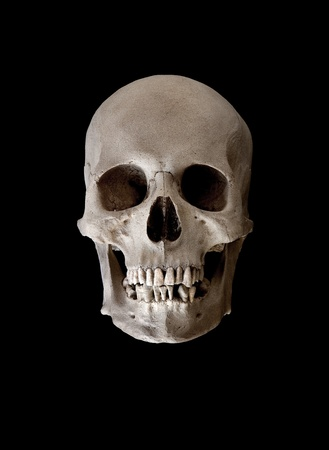 Cast of a weathered human skull isolated on black photo