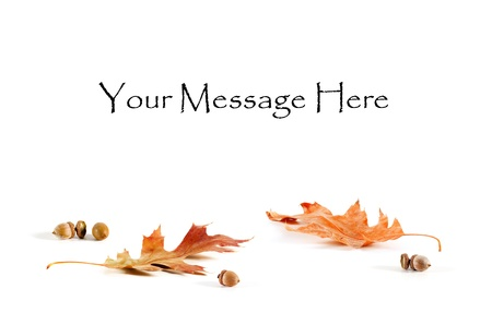 Fall Oak leaves and acorns form a base for a blank message card Stock Photo
