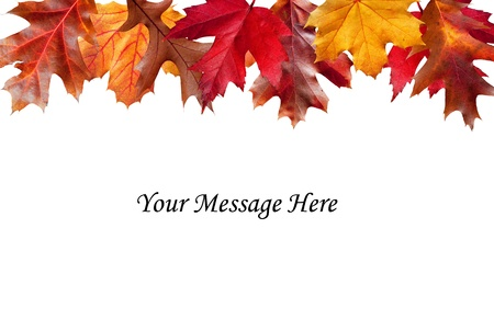 Colorful Fall leaves above a message area