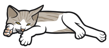 gray cat: kitten lying on a white background (illustration of a cat, little kitten lying down)