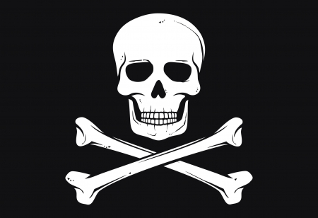 pirate flag (jolly roger pirate flag with skull and cross bones)
