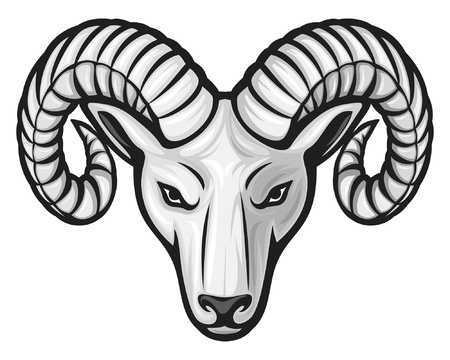 head of the ram (ram head) Vector