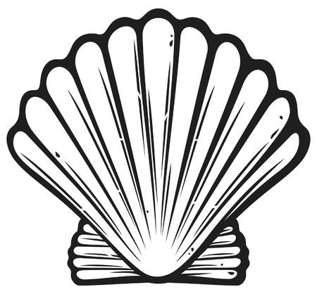 conchas: concha (concha de mar)