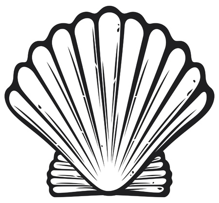 seashell: seashell (sea shell)