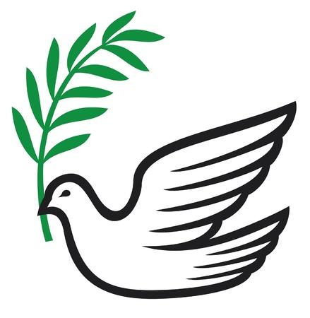 heaven on earth: dove of peace (peace dove, symbol of peace)