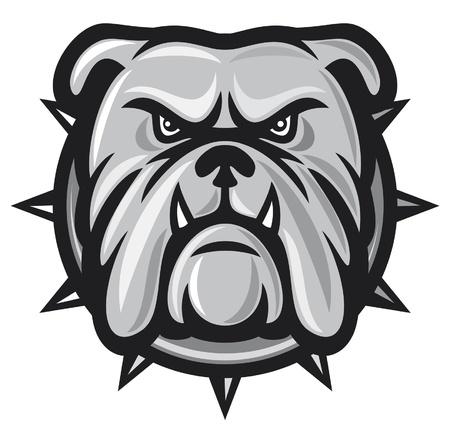 dogo: bulldog cabeza (enojado bulldog, bulldog ilustración vectorial) Vectores