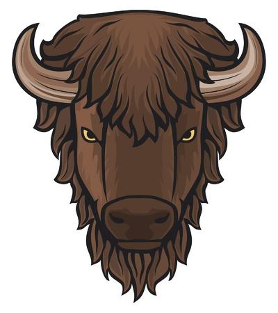 bull head: Buffalo head