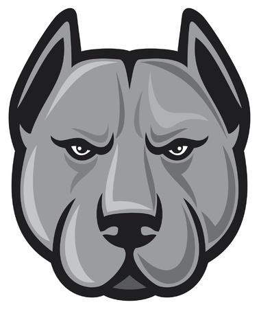 bull fight: pit bull head  pit bull terrier  Illustration