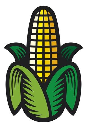 kernel: Corn Illustration