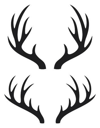 stag horn: deer horns