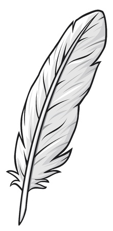 piuma bianca: piuma Vettoriali