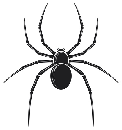 spider Stock Vector - 14836403