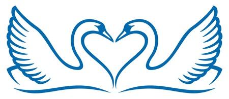 cisnes: ilustración vectorial de dos cisnes en el amor