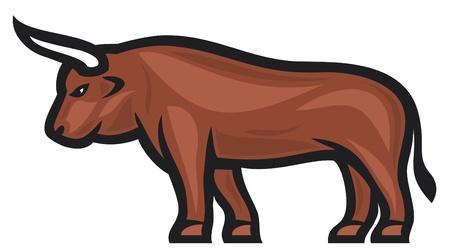 taurus: bull