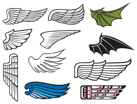 artificial wing: wings collection