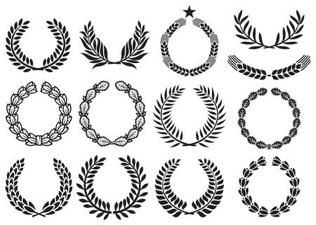 laurel leaf: Conjunto corona (colecci�n corona, corona de laurel, guirnalda de roble, guirnalda de trigo, y corona de olivo) Vectores