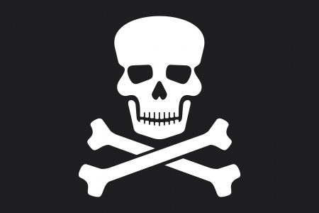pirate flag  jolly roger pirate flag with skull and cross bones  Vector