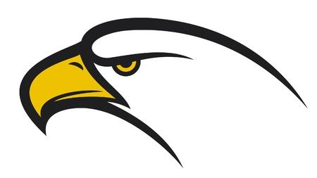 calvo: Águila cabeza
