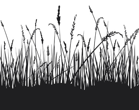 vector grass  grass silhouettes, grass silhouettes background Stock Vector - 14992868