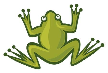 frog in love: frog