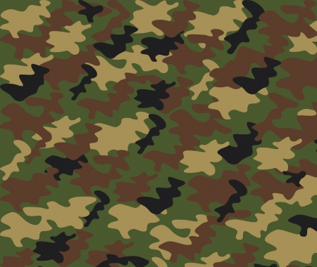 camouflage pattern  military background  Stock Vector - 14994147