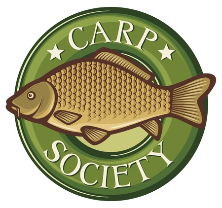 carp society symbol  carp society badge, carp fish emblem, carp society sign, common carp  Vector