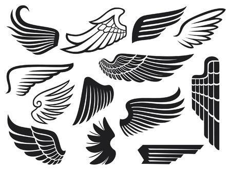 paloma caricatura: alas conjunto de recopilación de alas