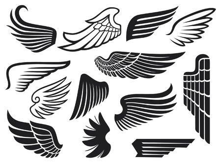 bird  celtic: wings collection  set of wings