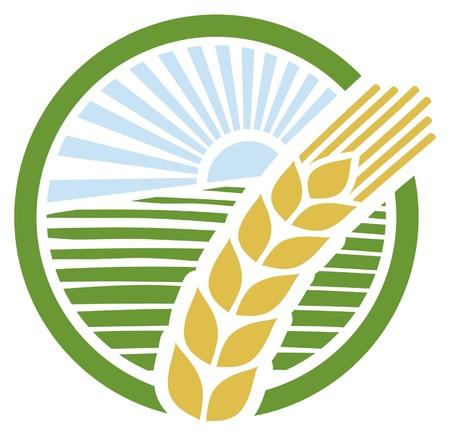 arroz: signo de trigo, trigo insignia, dise�o trigo Vectores