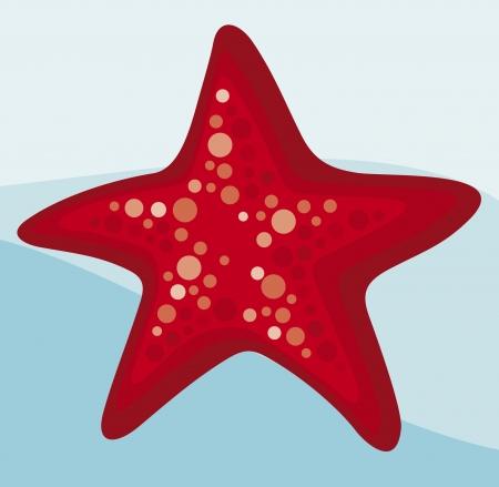 estrella caricatura: estrella de mar