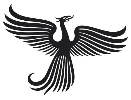 fenice: Phoenix uccello Vettoriali