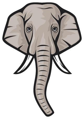 Elefant: Elefantenkopf indischen Elefanten