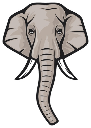elephant head  indian elephant  Stock Vector - 15414385