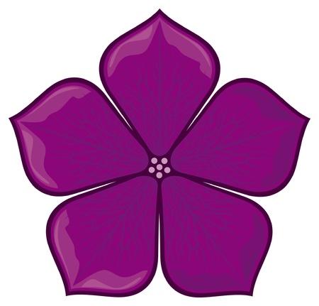 violet flower: violet flower Illustration