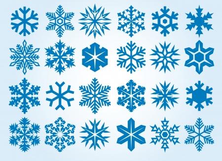 snow flakes: Collection of snowflakes  set of snowflakes