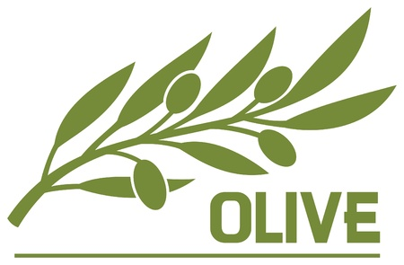 olive leaves: olive branch (olive symbol) Illustration