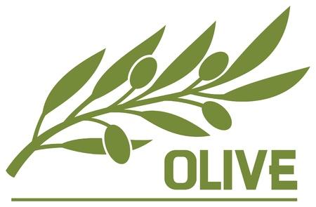 aceite de cocina: rama de olivo (s�mbolo de oliva) Vectores