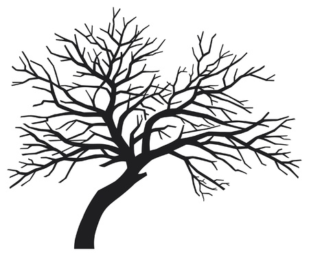 beech wood: scary bare black tree silhouette (tree without leaves, tree silhouette)