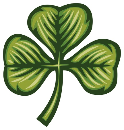 three leaves: Clover with three leafs  three leaf clover  Illustration