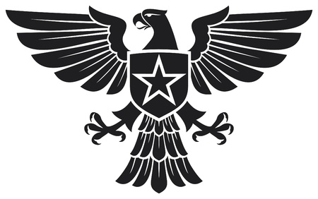 the air attack: eagle and star coat of arms Illustration