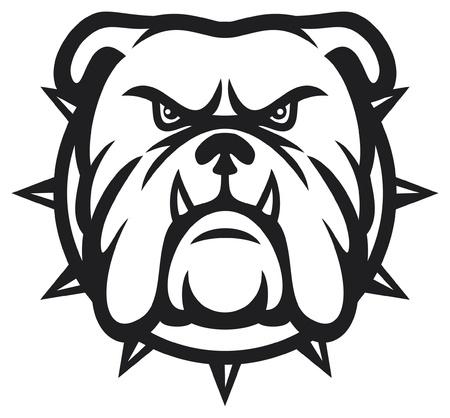 toros bravos: Bulldog cabeza (bulldog enojado) Vectores
