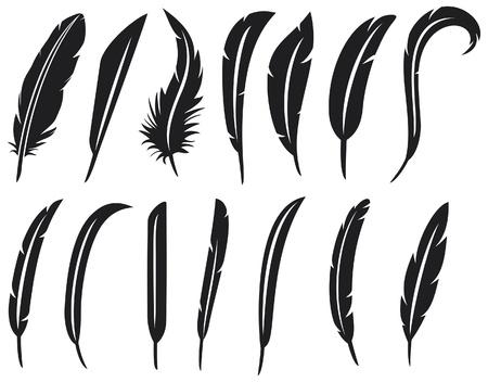 la raccolta di piume di raccolta piuma, piuma silhouette, set penna Vettoriali